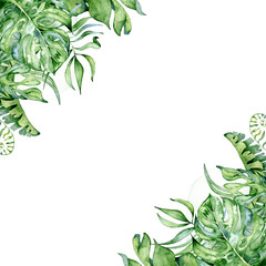 Tropical watercolor leaves banner on white background. Exotic floral designs. Hand drawn illustration