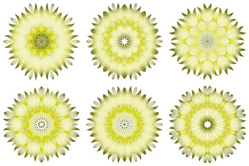 Set of Vector Illustration. Modern Decorative Floral Mandala. Hand Drawn Background. Islam, Arabic, Indian, Ottoman Motifs. Green olive color