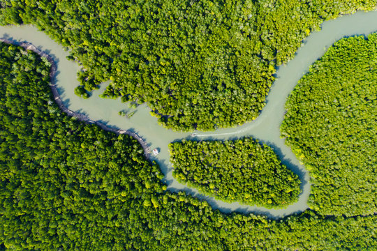 View from above, stunning aerial view of a river flowing through a green tropical forest, it discharges into the Andaman sea. Phang Nga Bay, Phuket, Thailand.