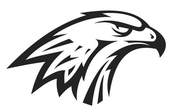 Abstract eagle or hawk head isolated on white background. Template for design mascot, label, badge, emblem or other branding. Vector illustration.