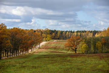 empty countryside fields in late autumn
