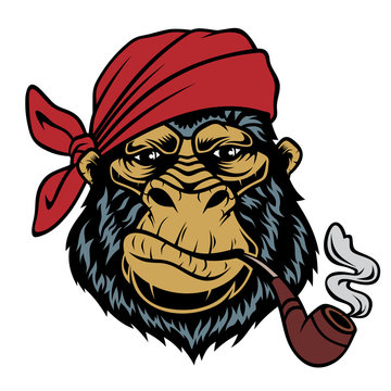 Monkey in a bandana with a smoking pipe.