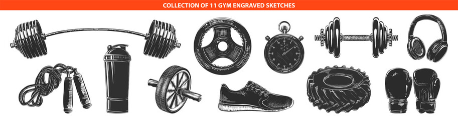 Vector engraved style gym and workout collection for posters, decoration and print. Hand drawn sketches of in monochrome isolated on white background. Detailed vintage woodcut style drawing.