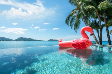 exterior swimming pool  ,floating swan  with blue sky of ocean