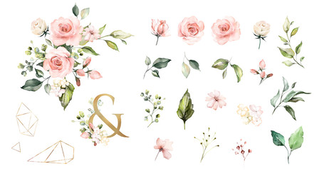 Set watercolor elements of roses collection garden  pink flowers, leaves, branches, Botanic  illustration isolated on white background.   ampersand