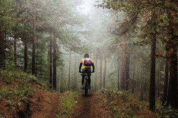 cyclist with backpack riding mountainbike on forest trail in fog Wall mural