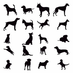 Silhouette Dog Set, Various Dog, Pet, Hound, Guard , Animal - Vector Illustration - Vector