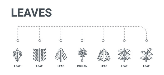 simple set of 7 line icons such as leaf, leaf, leaf, pollen, from leaves concept on white background