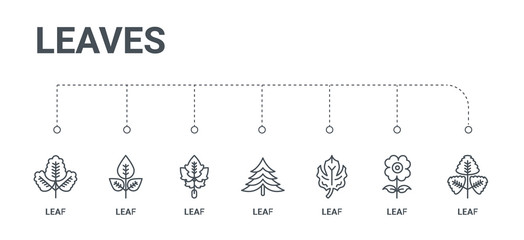 simple set of 7 line icons such as leaf, leaf, leaf, from leaves concept on white background