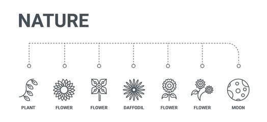 simple set of 7 line icons such as moon, flower, flower, daffodil, flower, plant from nature concept on white background