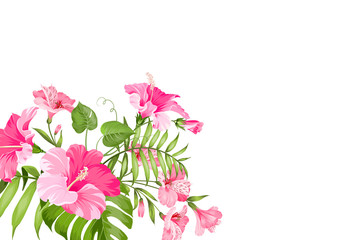 Tropical flower garland isolated over white background. Bouquet of aromatic tropical flowers. Invitation card template with color flowers of alstroemeria. Vector illustration.