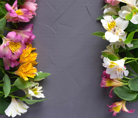 Background for text banner on a dark background with flowers. Blank, frame for text. Greeting card design with flowers. Aalstroemeria on wooden background. View from above