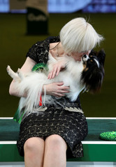 Crufts Dog Show in Birmingham