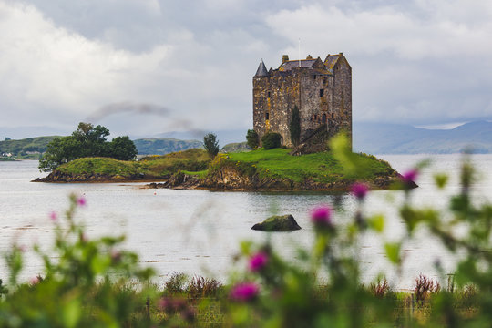 Castle Stalker four-storey tower house or keep in the Scottish highlands set on a tidal islet on Loch Laich, an inlet of Loch Linnhe in the summer with thistle scotland national flower