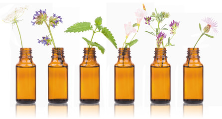 Bottles of essential oil with herbs holy flower.