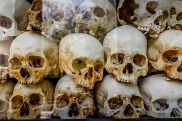 Skull in the box in Killing Field museum in Cambodia