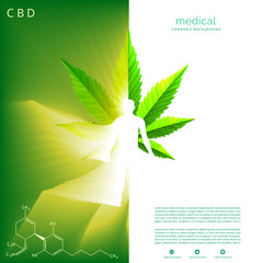 Marijuana plant and cannabis on green backgrounds.