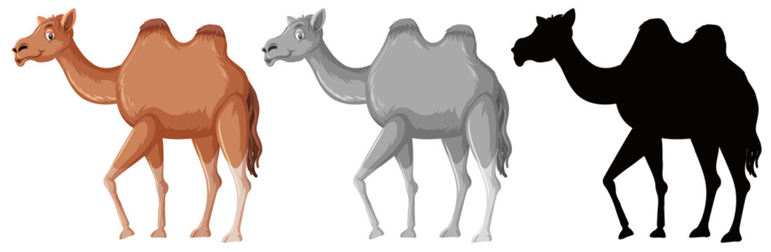 Set of camel character