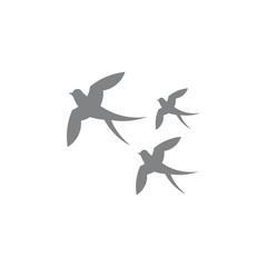 swallow birds group decoration vector