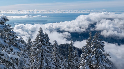 Winter Landscape View of Ocean from Mountain