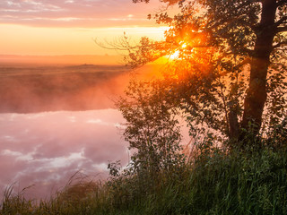 Summer sun rises at the bank of a small river shining through foliage of a tree and dispersing fog