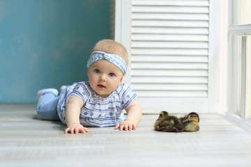 baby ducklings with kids