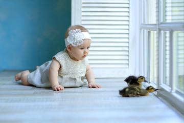 little girl in a beautiful dress lying on the window looking ducklings