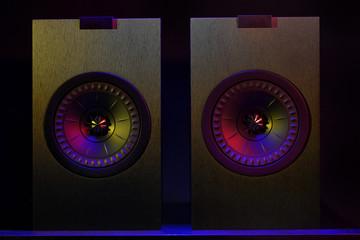 Professional cabinet hifi loudspeaker system