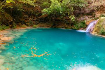 Source of Urederra river in Baquedano, Navarre, Spain