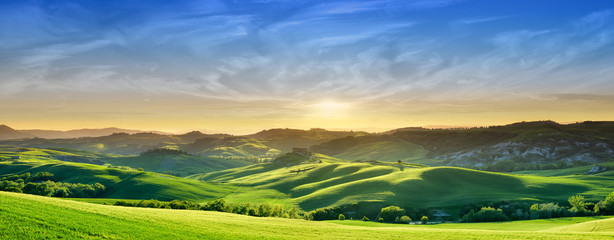 Wall Mural - Idyllic view, green Tuscan hills in light of the setting sun