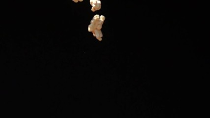 Fototapete - Popcorn falling down to the ground on black background in Slow Motion