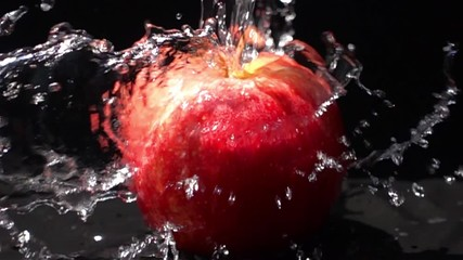 Fototapete - Pouring fresh water on a red apple on black background in Slow Motion