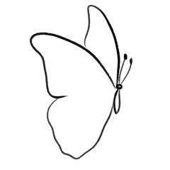 vector butterfly line illustration
