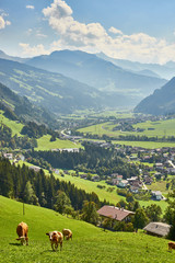 "View over beautiful Valley ""Zillertal"" in Tirol in Austria"
