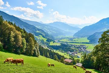 """View over beautiful Valley """"Zillertal"""" in Tirol in Austria"""