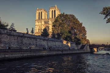 Fototapete - Sunlight on the facade of the cathedral Notre-Dame in paris