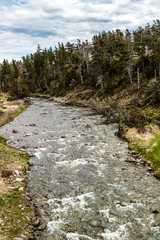 Portland creek to the St. Larence Seaway, Bellbuns, Newfoundland, Canada