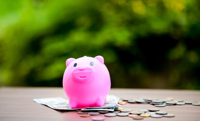 Close-up pictures of money and pigs, saving money Saving money The concept of saving money
