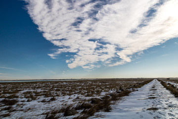 First snows, brilliant blue skies over a field, Frank Lake, Vulcan County, Alberta, Canada