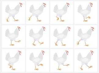 Walking white hen animation sprite sheet isolated on white background