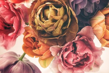 Colorful tulips in vintage style