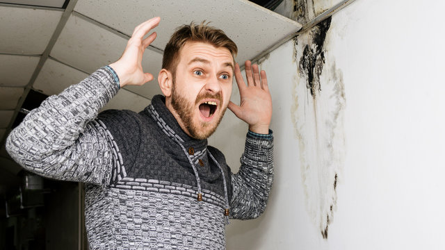 Bearded man in shock from the black mold on the wall and ceiling.