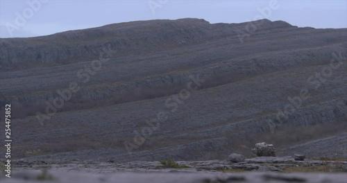 Burren Ireland limestone stone karst landscape rock strata