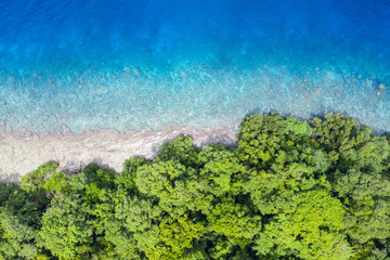 Wall Mural - Aerial of Rainforest and Reef in Papua New Guinea