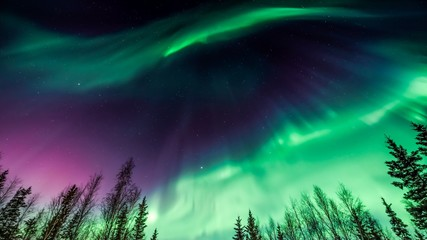 Aurora Night Sky