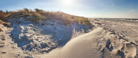 Sand dunes and windy beach in Hiddensee island on the Baltic coast of Germany, panorama