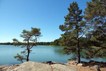 Naturreservat Ragö bei Stockholm, Schweden