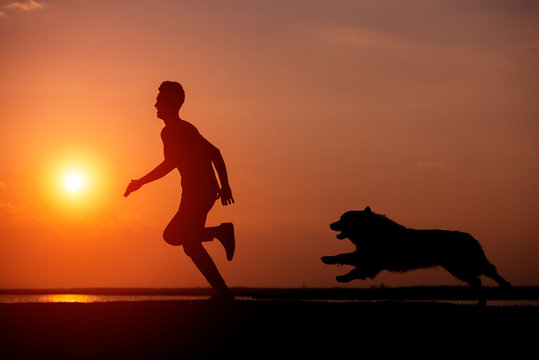 Athletic young man with dog are running in the nature during golden sunset.