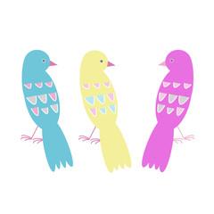 vector birds colorful illustration