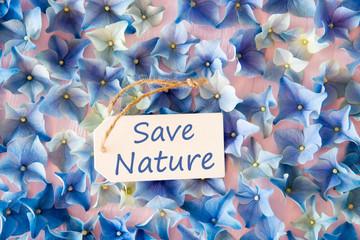 Hydrangea Flat Lay, Text Save Nature, Blossom Texture